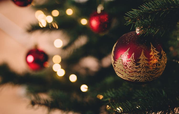 6 Ways to Use Artificial Grass This Christmas