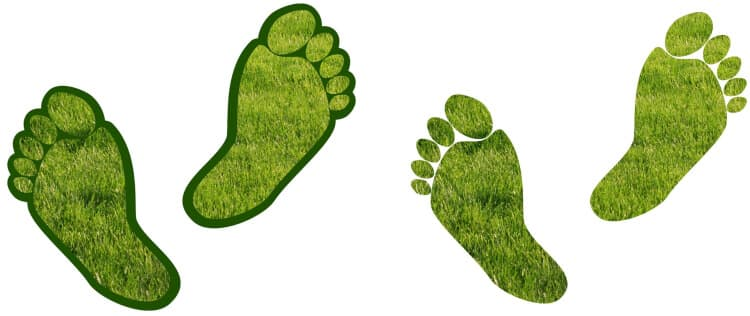 Artificial Grass Footprints